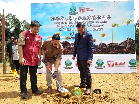 Symbolic Paulownia tree planting by Tengku Adil Hazraq, witnessed by Dr. H'ng Paik San (left) and Wong Choong Chin (right)