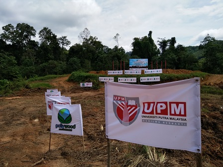The sprawling 200-hectare farm that will be planted with Paulownia trees at Mering subdistrict, Lojing, Gua Musang, Kelantan,  with the help of Pollywood and UPM experts.